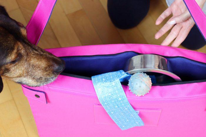 torba ležaj za pse